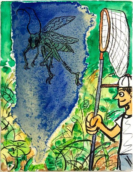 安部悠介 Yusuke ABE《虫捕り / Insect catcher》2016