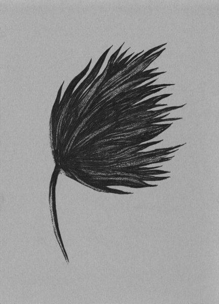 「flower」ヴィレ・アンデション